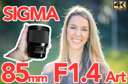 sigma 85 art review